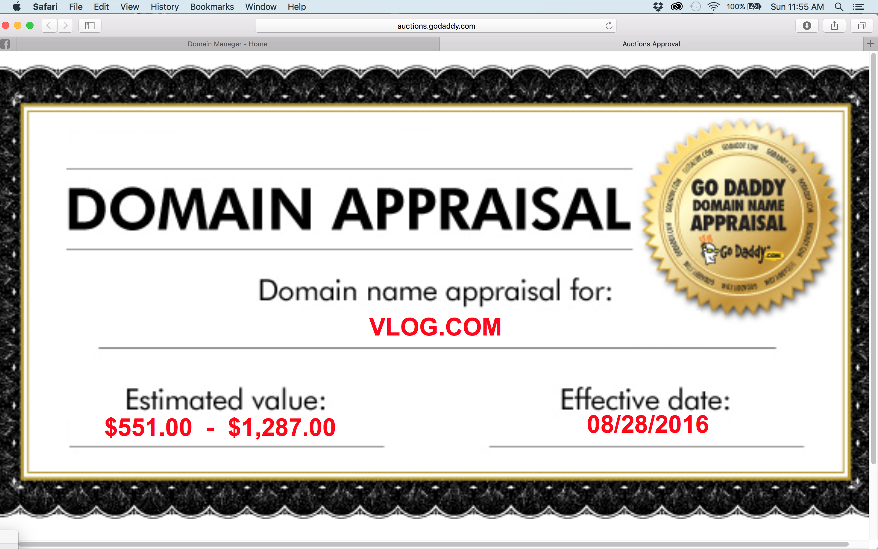 $50,000 VLOG COM contradictory appraisals: dream domain or